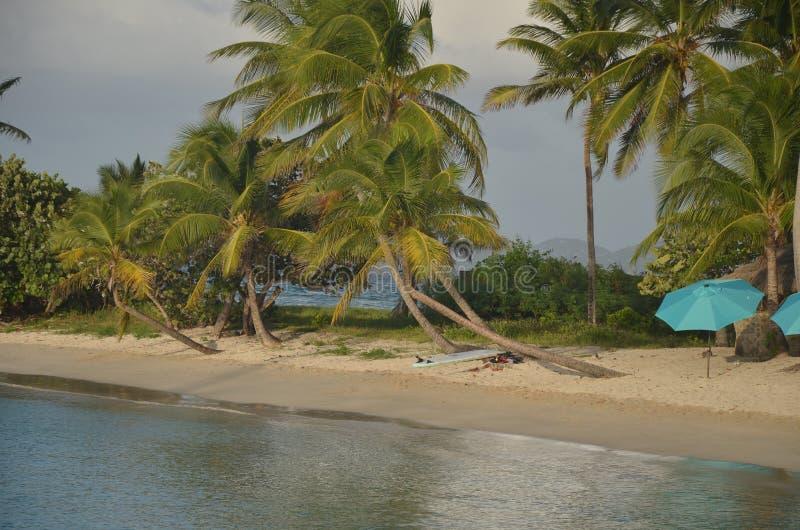 Surfbrett und Sonnenschirm auf kleinem karibischem Strandstreifen stockbild