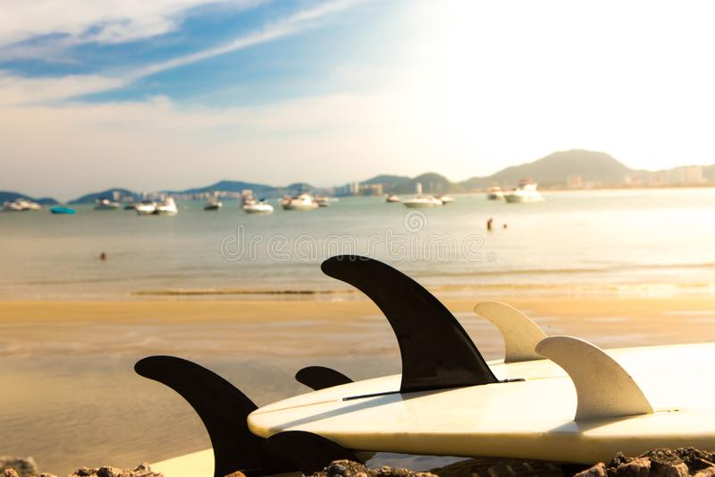 Surfbretter, die auf den Felsen durch das Meer mit einer großen Gruppe Yachten festgemacht im Hintergrund liegen stockbild