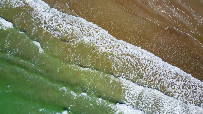 Surfe em uma praia ensolarada em Auckland, Nova Zelândia imagens de stock royalty free