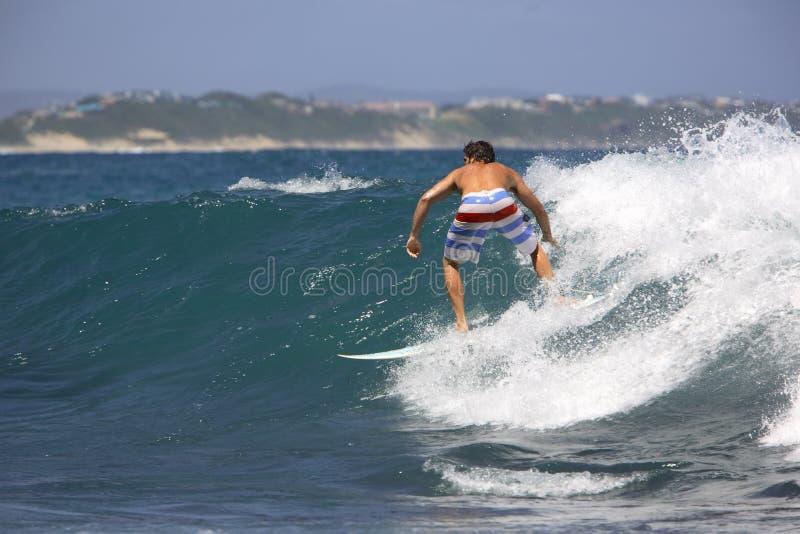 Surfen lizenzfreie stockbilder