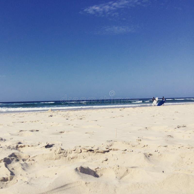 Surfen auf die zusammenstoßenden Wellen des Gold Coast Australien stockbild