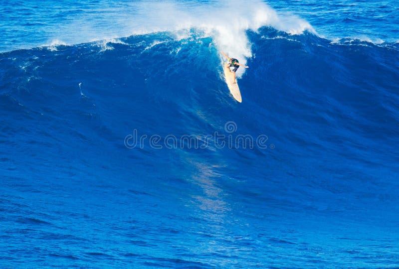 Surfer που οδηγά το γιγαντιαίο κύμα στοκ εικόνες με δικαίωμα ελεύθερης χρήσης
