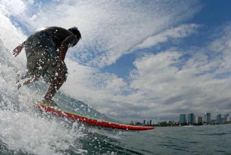 surfer obraz royalty free