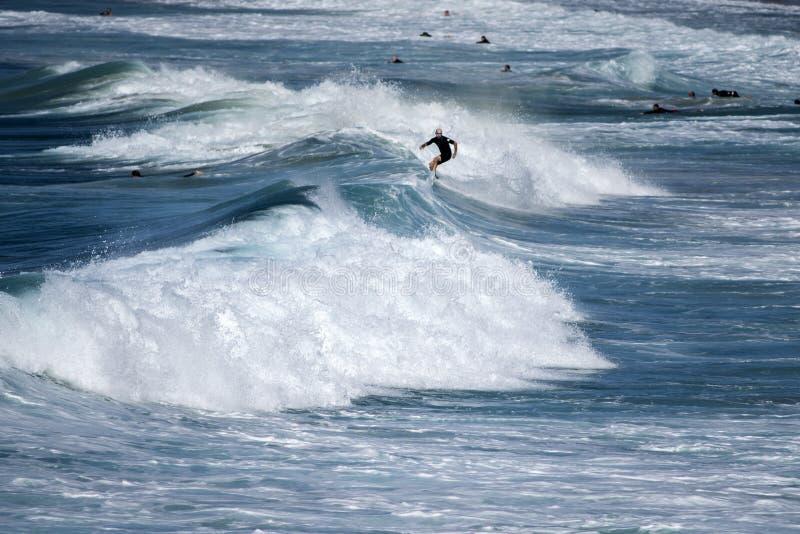 Surfer appréciant les vagues images libres de droits