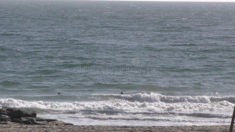 Surfer auf fangenden Wellen des Strandes durch Felsenanlegestelle stock video footage