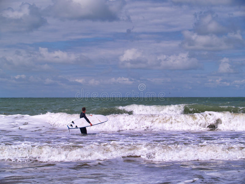 Download Surfer at the beach stock image. Image of summer, relaxation - 31042613