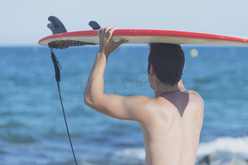 Surfer beau tenant la planche de surf sur la tête de l'arrière images stock