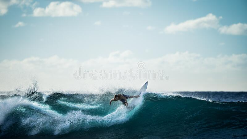 Surfer catching wave royalty free stock image
