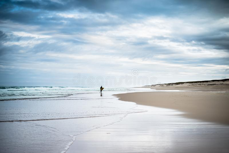 Surfer on the coast of the Atlantic Ocean. France. Landes. royalty free stock photo