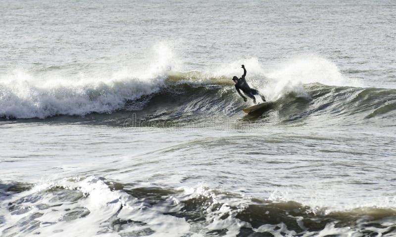 Surfer d'hiver image libre de droits