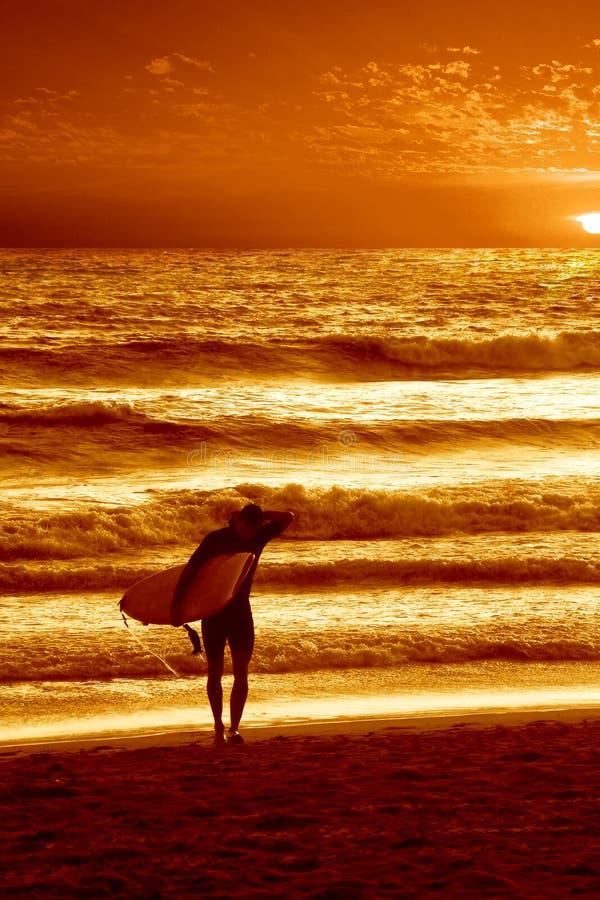 Surfer de coucher du soleil photographie stock libre de droits