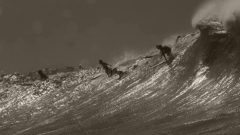 Surfer dropping in at Waimea Bay. Big wave surfing on the North shore of Oahu, Hawaii during the winter big wave season royalty free stock photography