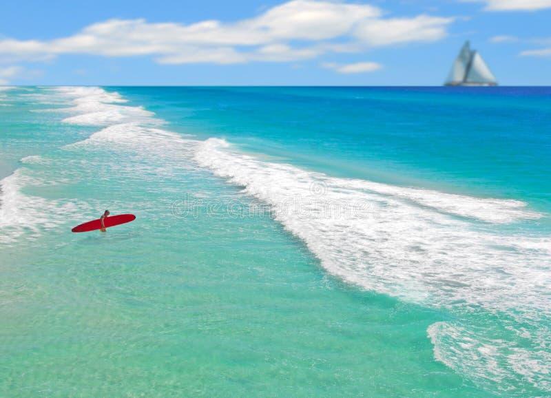 Download Surfer Entering Ocean stock image. Image of coastal, adventure - 5769725