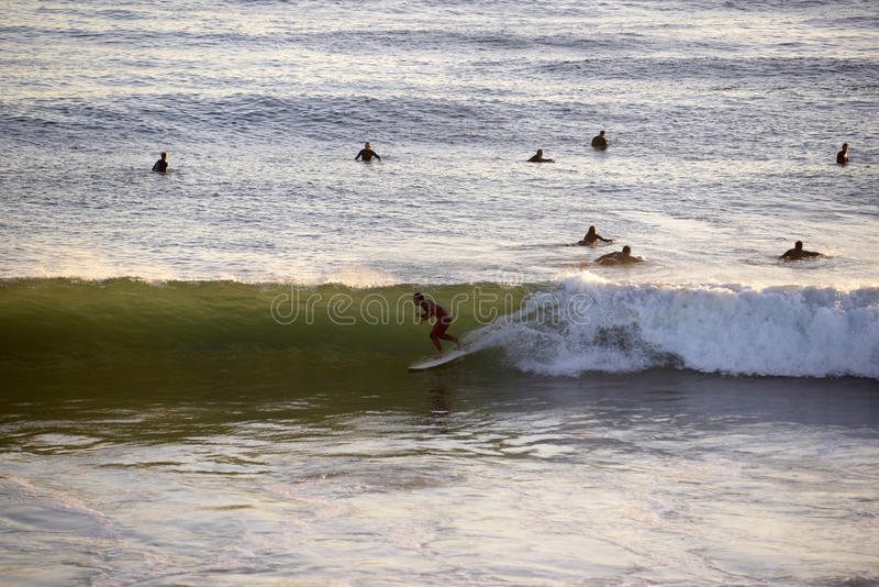 Surfer Entering Tube Wave, Water Sports, Sundown. Surfer on top of wave in an sunset water scenery. In the background, some surfers waiting a wave to ride, near royalty free stock images