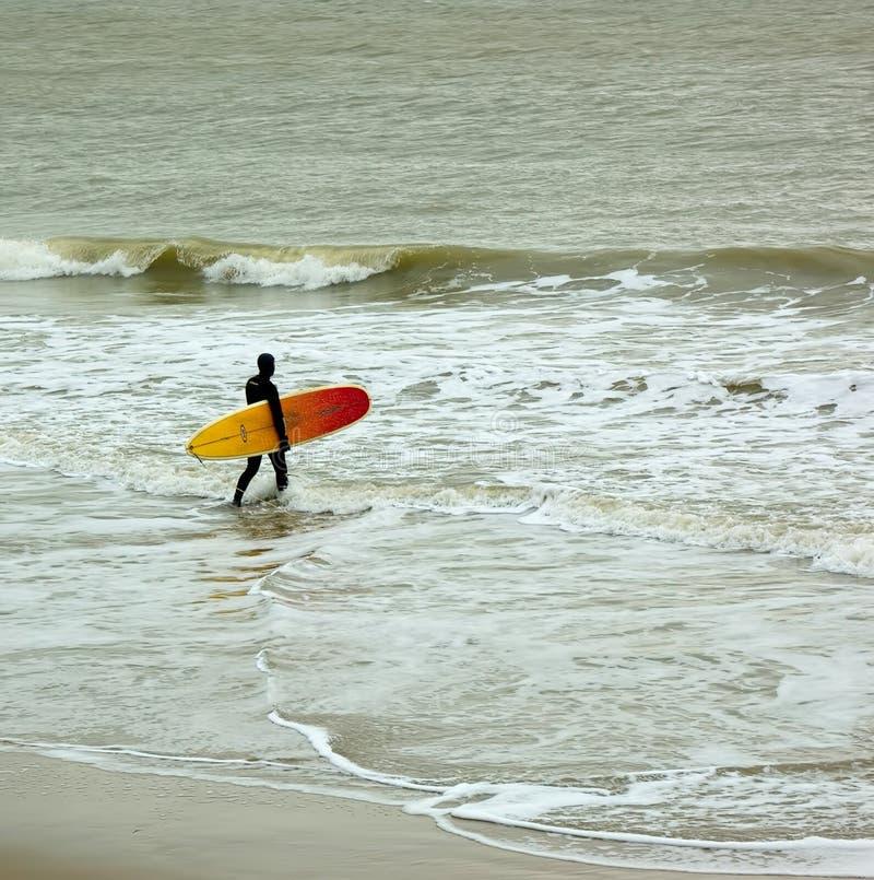 Surfer entrant dans la mer photographie stock libre de droits