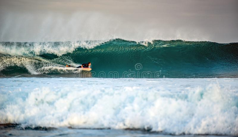 Surfer gets up on a wave. stock photography