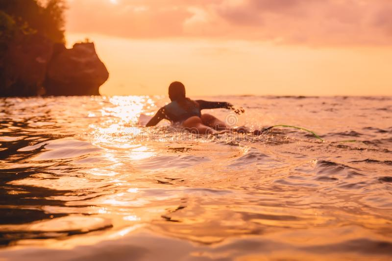 Surfer girl on a surfboard floating in ocean near rocky shore. Surfing at sunset. Surfer girl on a surfboard floating in ocean near rocky shore stock photography