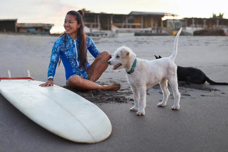 Surfer Girl. Surfing Woman On Beach Near Surfboard And Dog. Smiling Female In Blue Wetsuit Sitting On Sand. Water Sport As Hobby royalty free stock photo