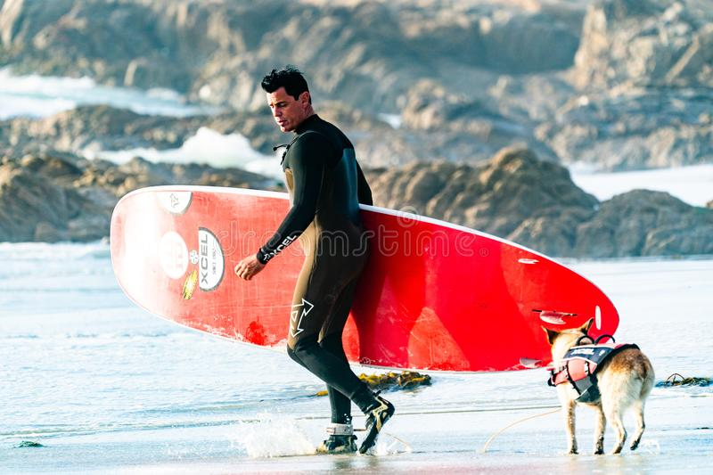 Surfer Holding Red Surf Board Near A Dog Free Public Domain Cc0 Image