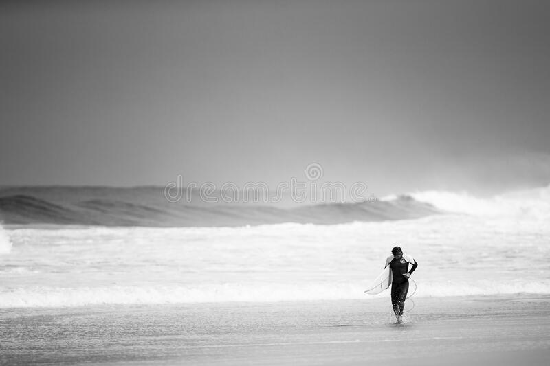 Surfer leaving sea with big waves stock image