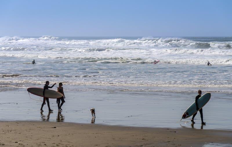 Surfer les vagues sur la côte de l'Orégon photos stock