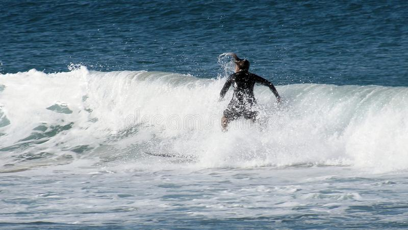 Surfer at Manly Beach. A surfer on a small wave at Manly Beach, Australia royalty free stock image