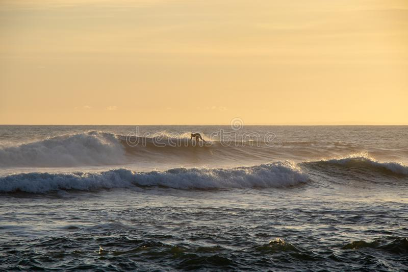 Surfer montant une vague au coucher du soleil chez Echo Beach Canggu Bali Indones photos stock