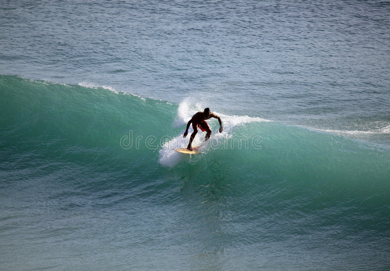 Surfer in ocean stock images