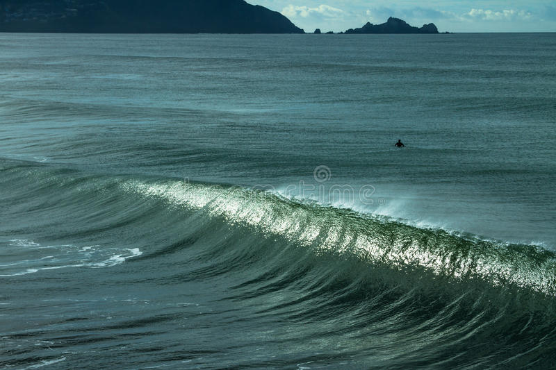 Surfer in the ocean waiting for the perfect wave. stock images