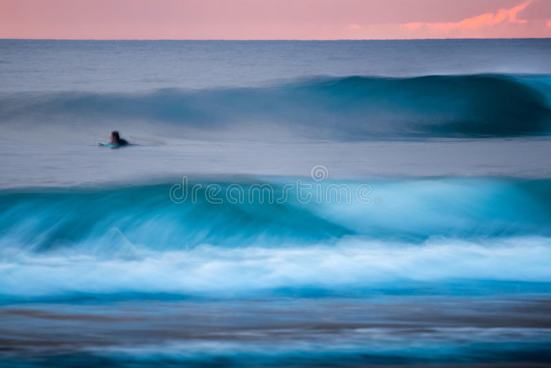 Surfer in the ocean stock image
