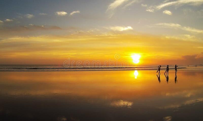 Surfer op overzees strand stock fotografie