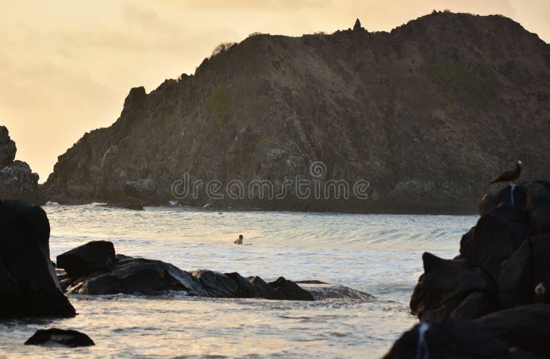 Surfer Praia do Meio - το Fernando de Noronha στοκ φωτογραφία με δικαίωμα ελεύθερης χρήσης