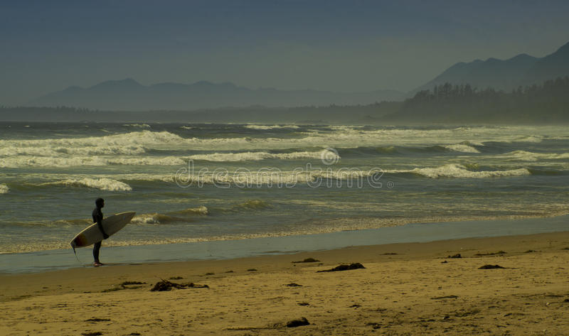 Surfer on Public beach with waves and mountains Tofino British Columbia. Surfer watches the Pacific surf at a public beach near Tofino British Columbia Canada royalty free stock image