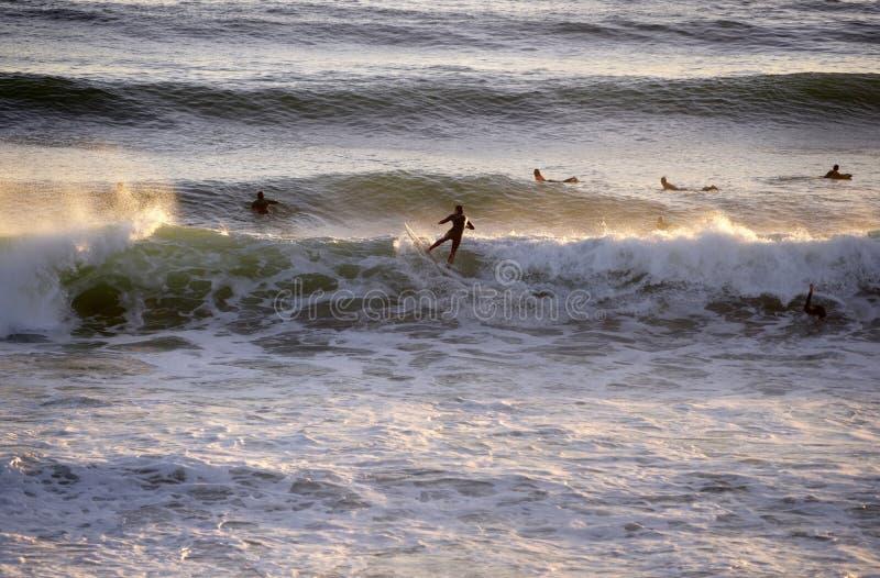 Surfer-Reitwelle, Wasser-Sport, Sonnenuntergangs-Szene lizenzfreie stockfotos