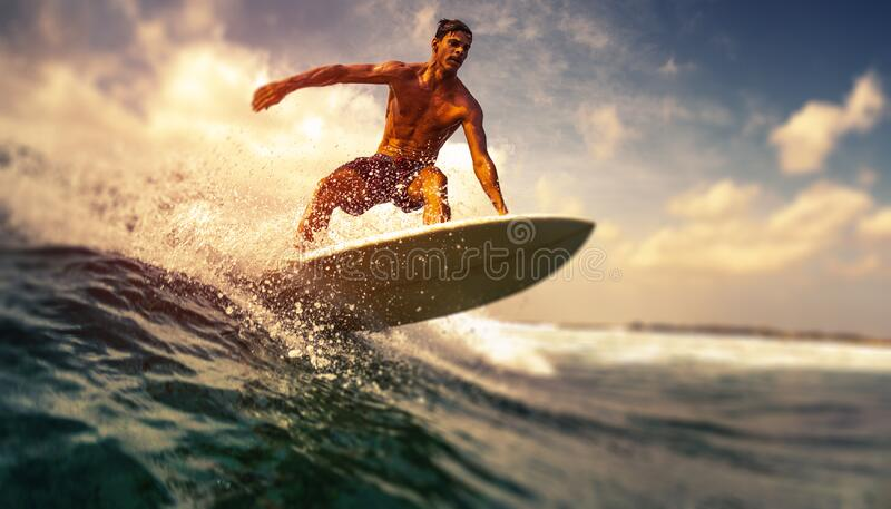 Surfer rides ocean wave royalty free stock images