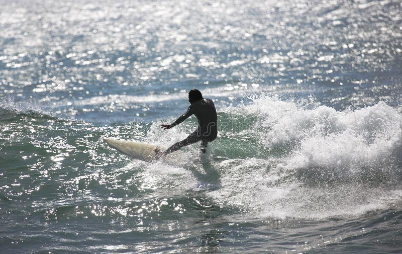 Download Surfer rides a wave stock image. Image of board, bold - 13755245