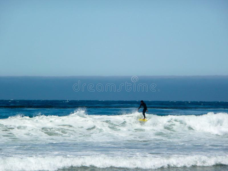 Surfer in Santa Monica, California stock photography