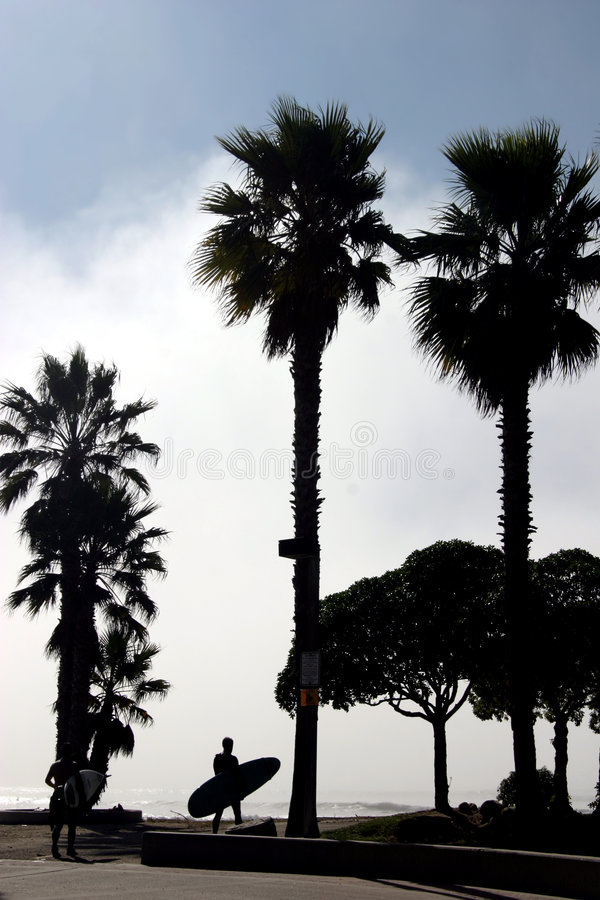 Download Surfer Silhouette stock image. Image of palm, satisfied - 64771