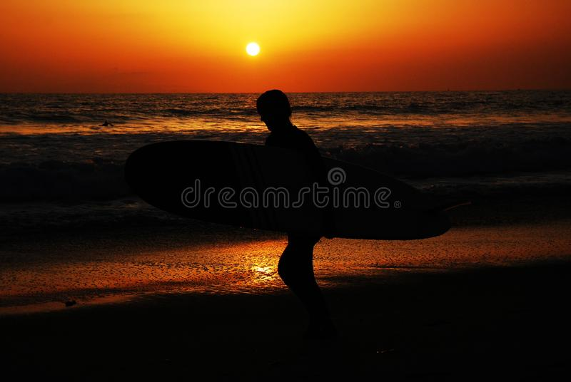 Surfer at sunrise royalty free stock images