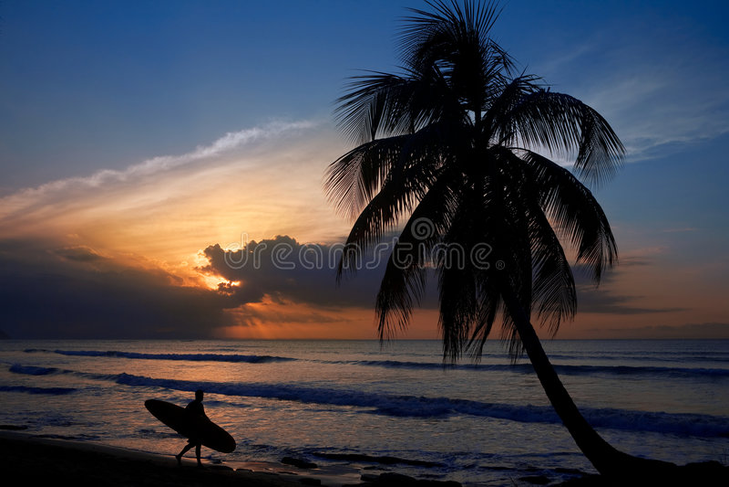 Download Surfer at sunset stock photo. Image of spirit, palm, republic - 5058238