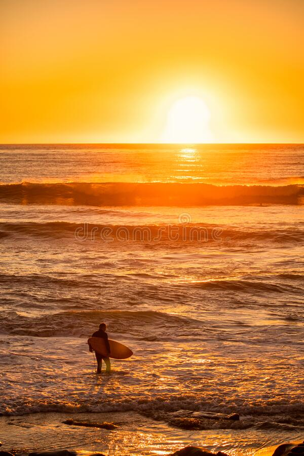 Surfer at Sunset, La Jolla fotografia stock