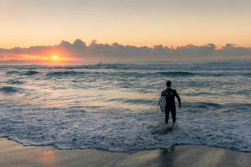Surfer with surf board entering the ocean on sunrise royalty free stock photo