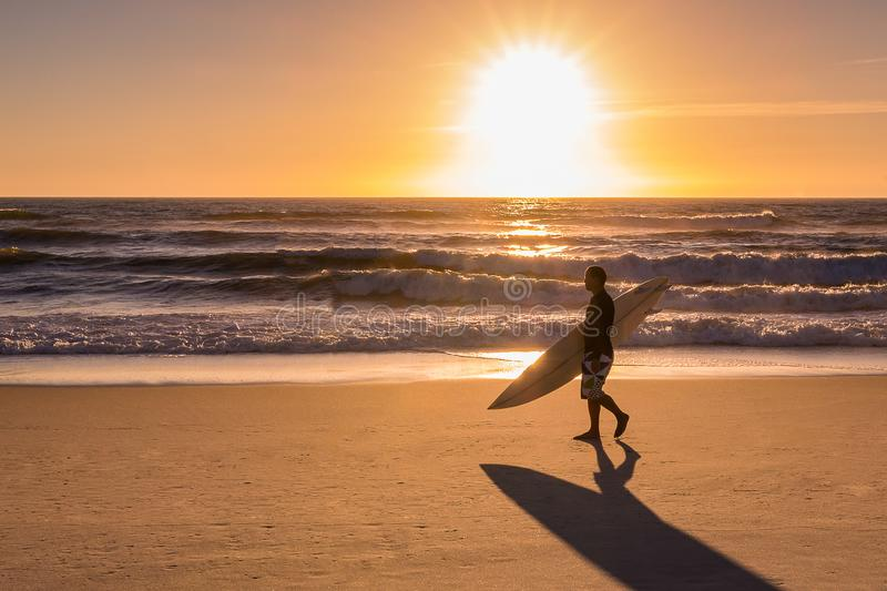 Surfer walking on the beach royalty free stock image
