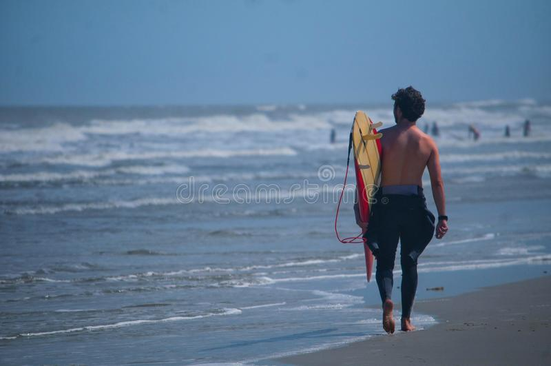 Surfer walks down sandy beach looking for a good place to surf in Jacksonville, Florida stock photos
