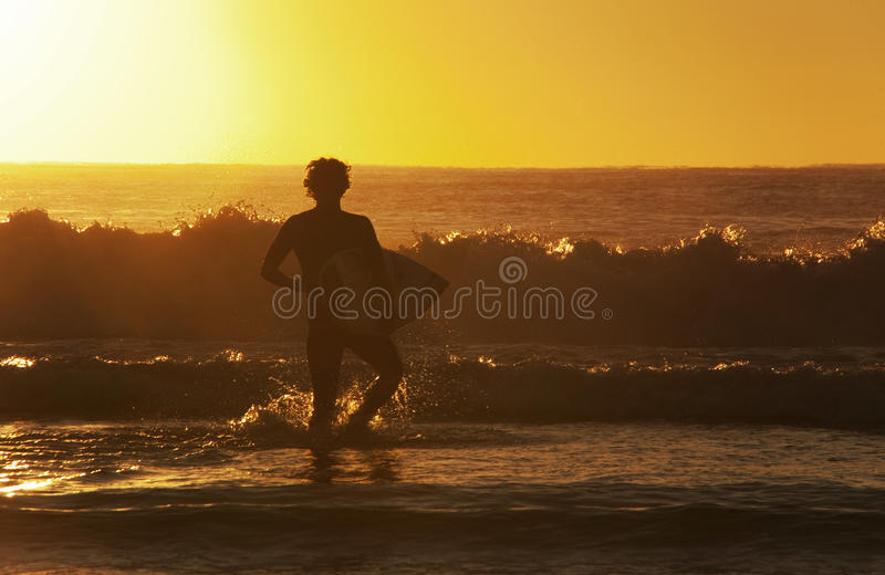 Surfer walks out to the early morning waves stock image