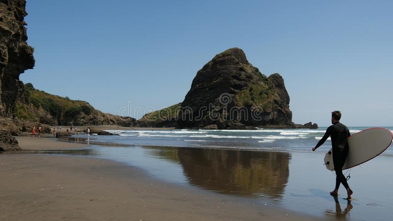 Surfer walks at Piha Beach. In New Zealand royalty free stock images