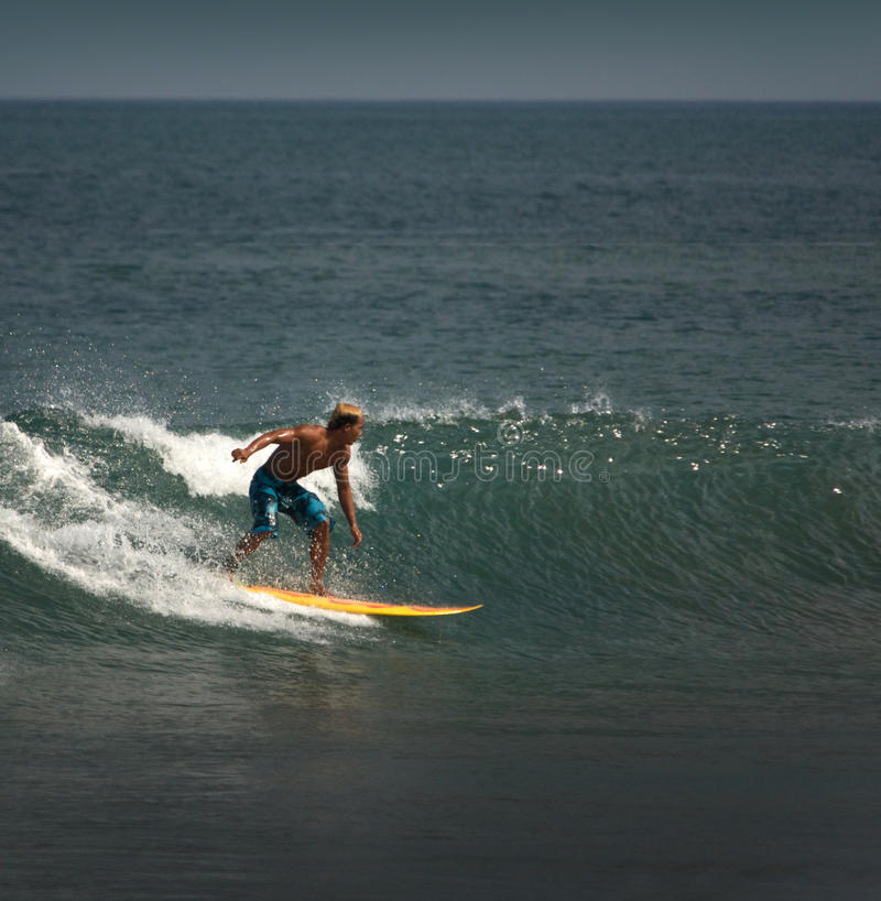 Download Surfer on the wave stock photo. Image of tropical, surf - 11861722