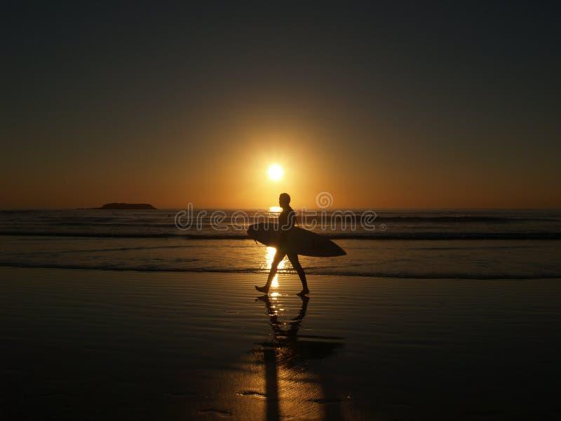 Surfer in zonsondergang stock afbeeldingen