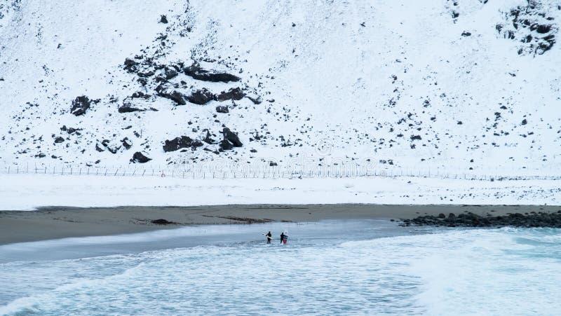Surfers στο κρύο Lofoten νησί παγώματος κατά τη διάρκεια του χειμώνα, Νορβηγία στοκ εικόνες