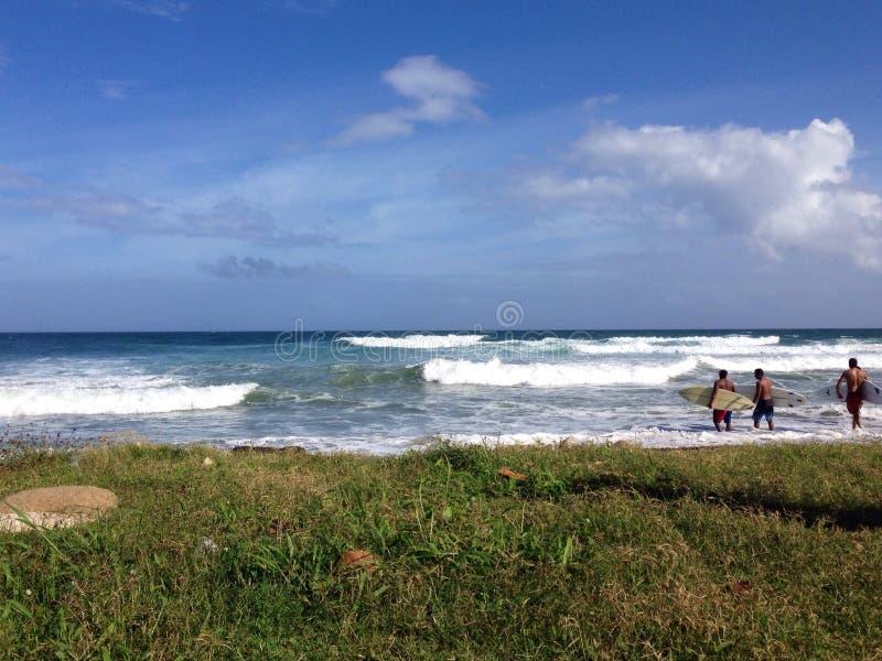 surfers imagem de stock royalty free